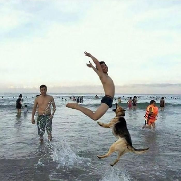 Fue una mala idea enseñarle al perro a coger salchichas al vuelo