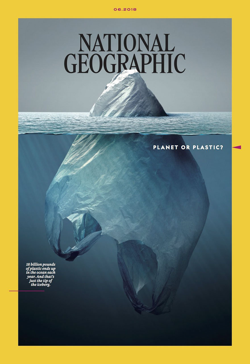 plastic-crisis-impact-on-wildlife-national-geographic-june-issue-cover-18-5afd83cf37ffc__880.jpg