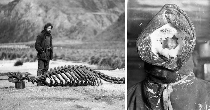 Rare Photos Of First Australasian Antarctic Expedition ...