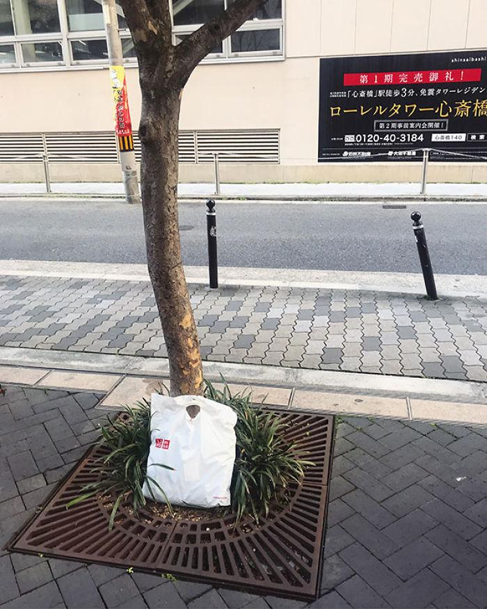 Se me cayó en la calle en Osaka una bolsa con compras, cuando volví más tarde a buscarla, la habían puesto junto a un árbol, sin llevarse nada