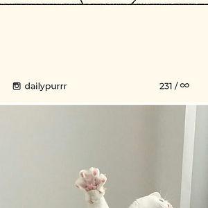 Stupid-Cat Drawings-Dailypurrr