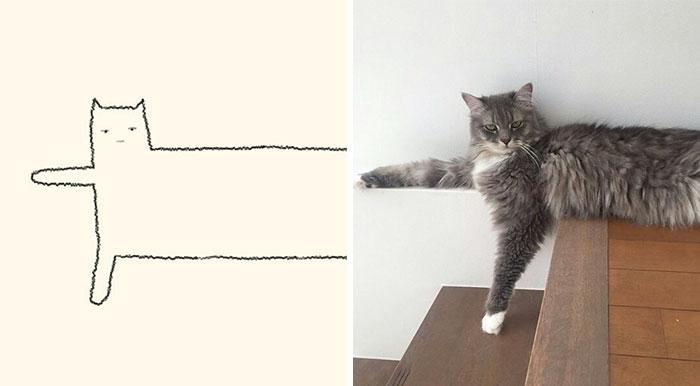 85 Times 'Stupid Cat Drawings' Made Everyone Laugh With How Accurate They Were