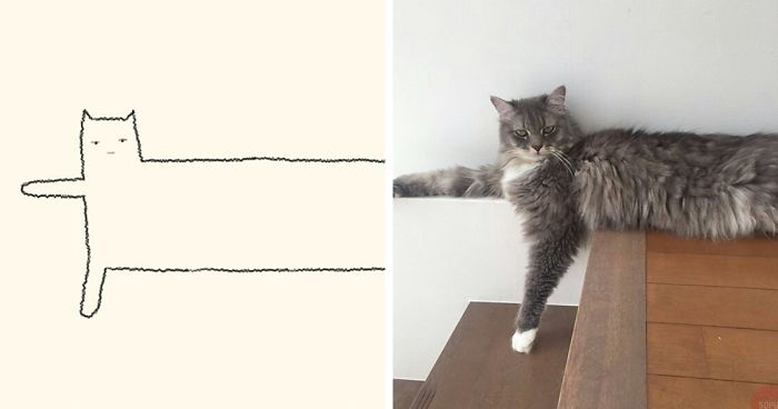 85 Times Stupid Cat Drawings Made Everyone Laugh With How Accurate