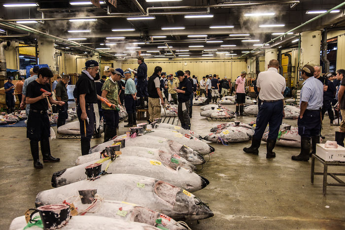 Help Me Spread The Last Message Of The Dying Iconic Fish Market In Tokyo… Maybe We Can Safe Tsukiji Together