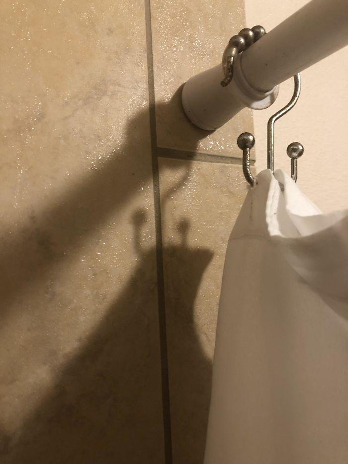 Shadow In My Shower Looks Like A Confident Slug