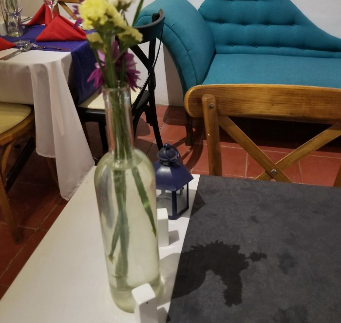 The Shadow Cast By The Flowers On My Table Looks Like A Unicorn