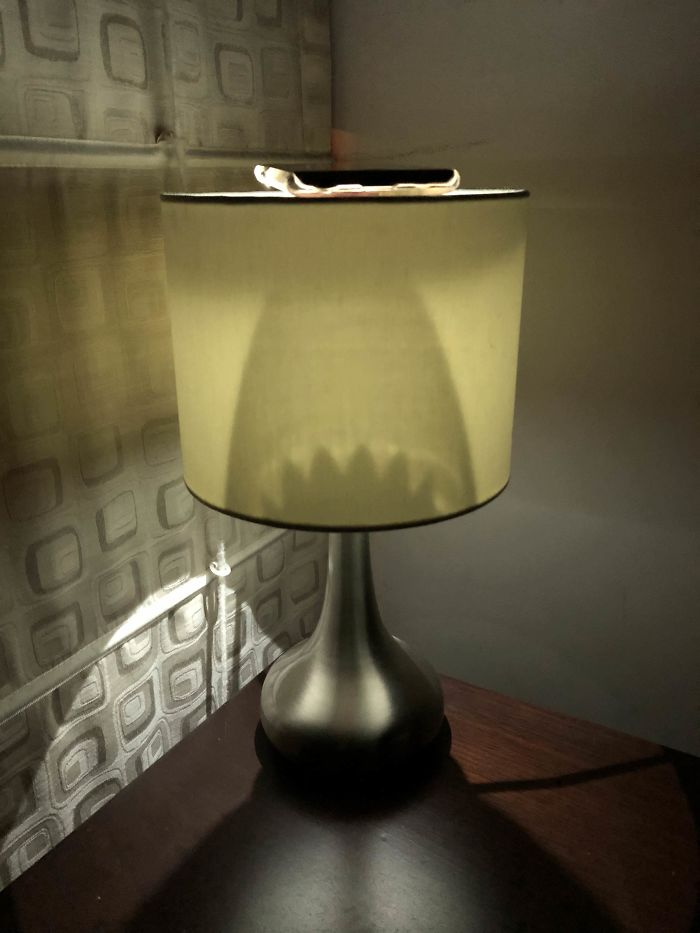 I Placed My Phone With The Flashlight On, On Top Of This Lamp. Got An Interesting Shadow