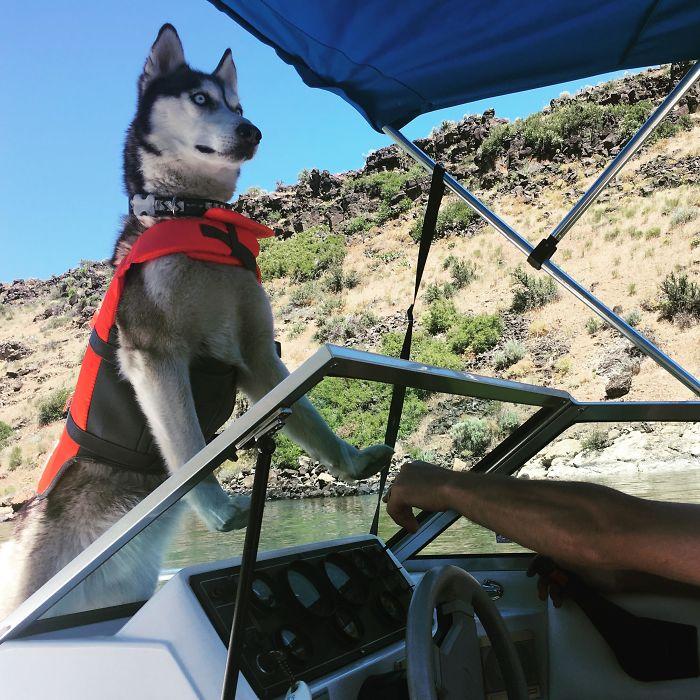 Su primer viaje en barca y va mirando en dirección contraria y sin dejar ver al capitán