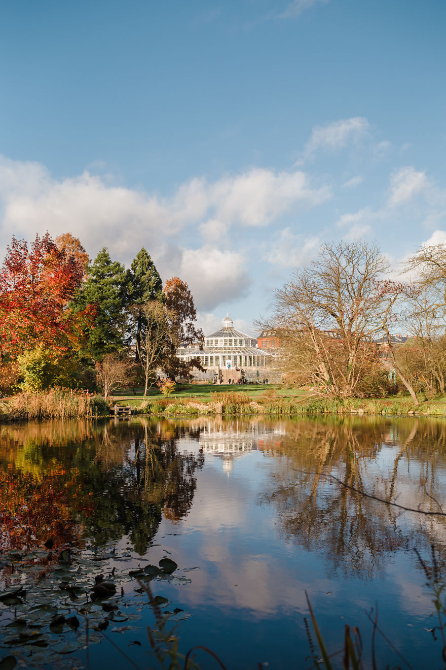 Botanisk Have In Fall