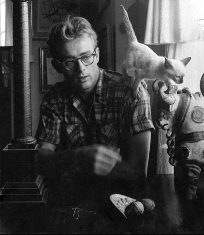 James Dean And His Cat Marcus, New York, 1954