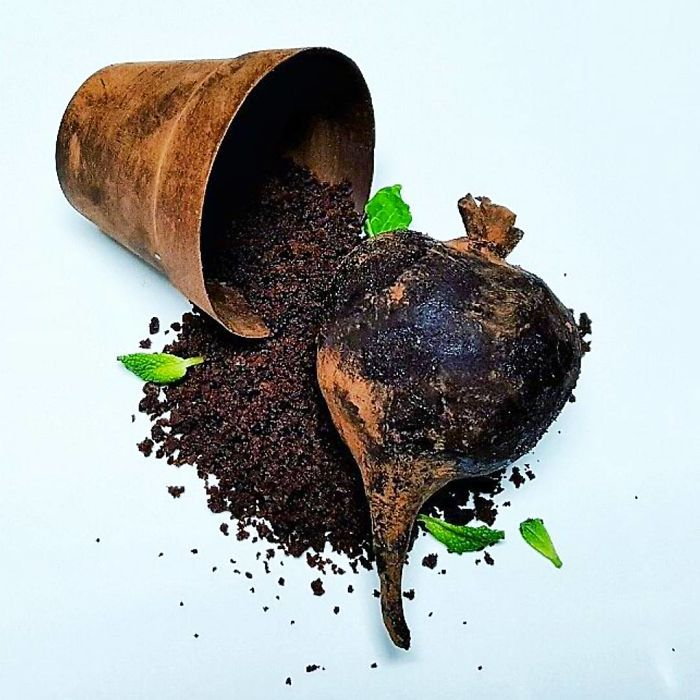 Chocolate And Beetroot Cake, Chocolate Soil, Chocolate Plant Pot