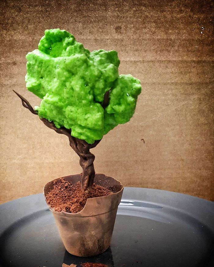 Chocolate Plant Pot Filled With Chocolate Mousse, Sprouting A Chocolate Tree, Topped With A Fluffy Matcha Foam