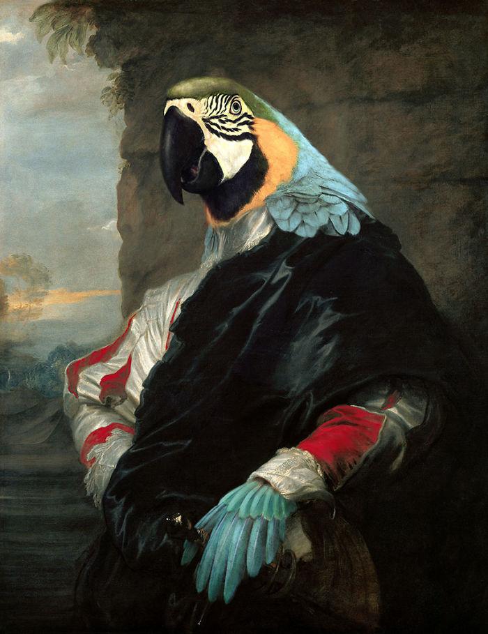 Duke Parrot