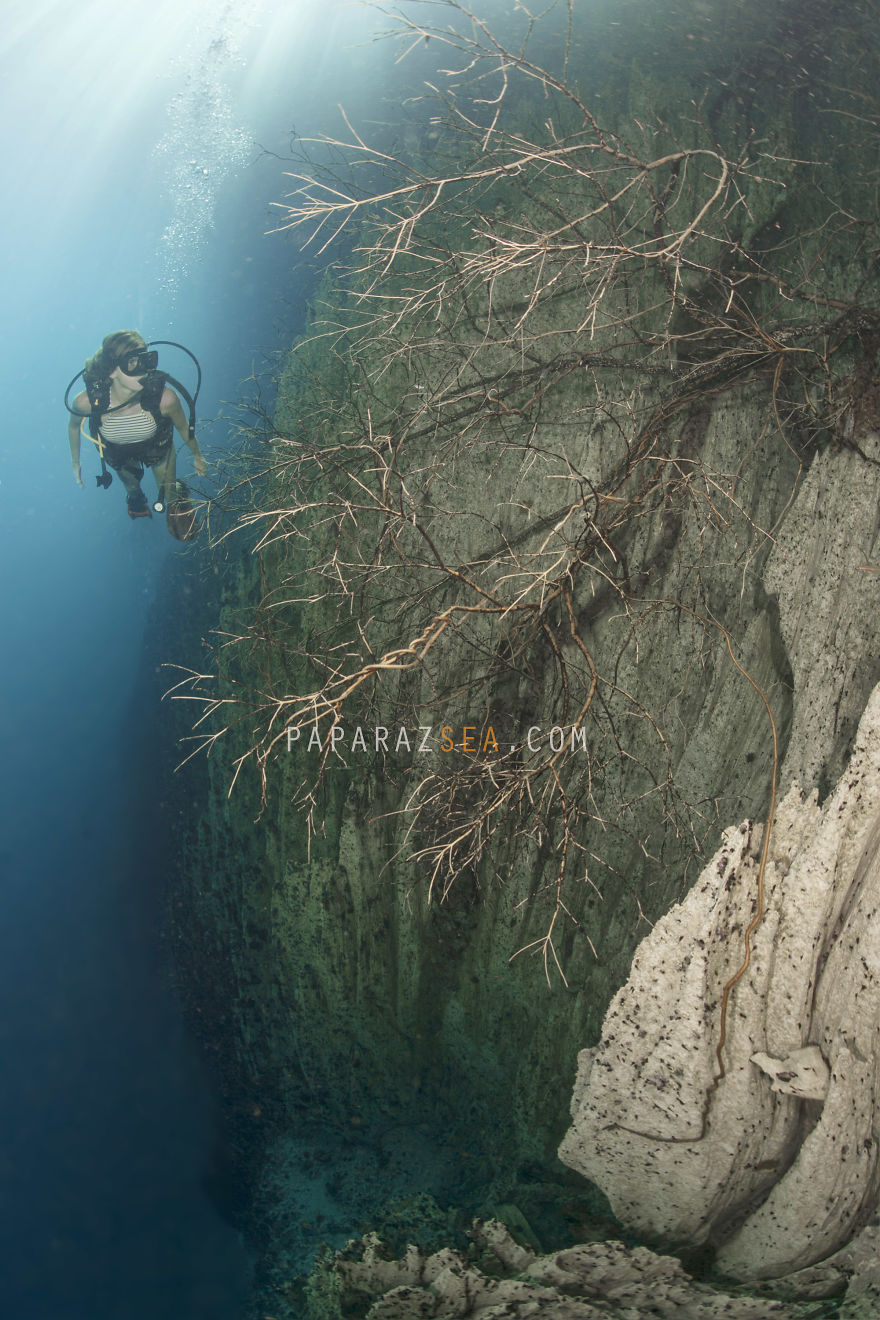 Seven Wonderful Photos Of An Out-Worldly Underwater Lake Which Will Make You Want To Go And Explore It Now...