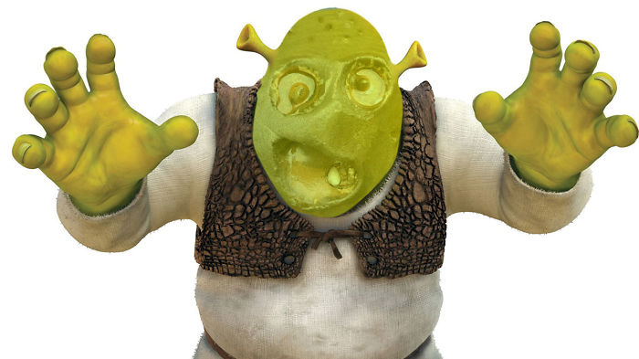 What Are You Doing In My Swamp?!