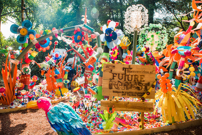 We Turned 3 Tons Of Plastic Waste Into A Colorful Forest In Mexico City