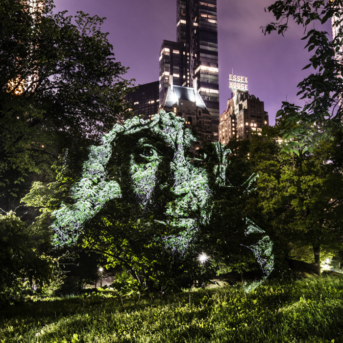 Artist Creates Incredible Portraits In Central Park Using Light Projections