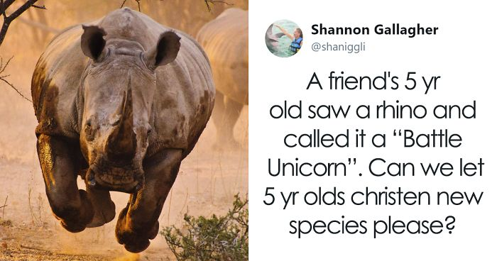 20+ Times Genius Kids Came Up With Their Own Words For Common Items, And It Was Spot On
