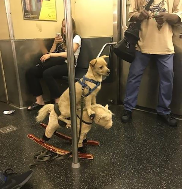 Spotted On The Subway