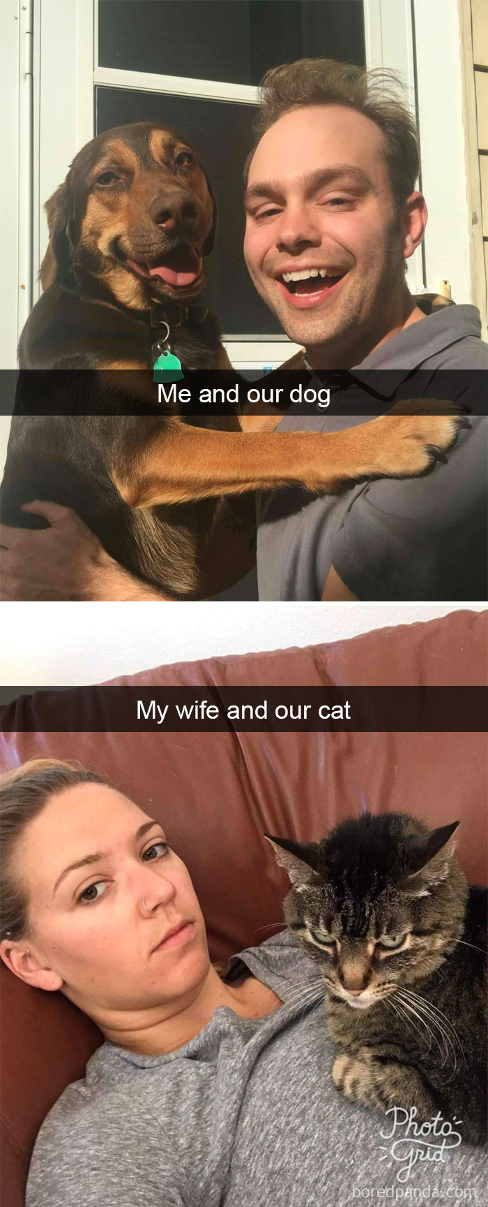 Me And Our Dog And My Wife And Our Cat