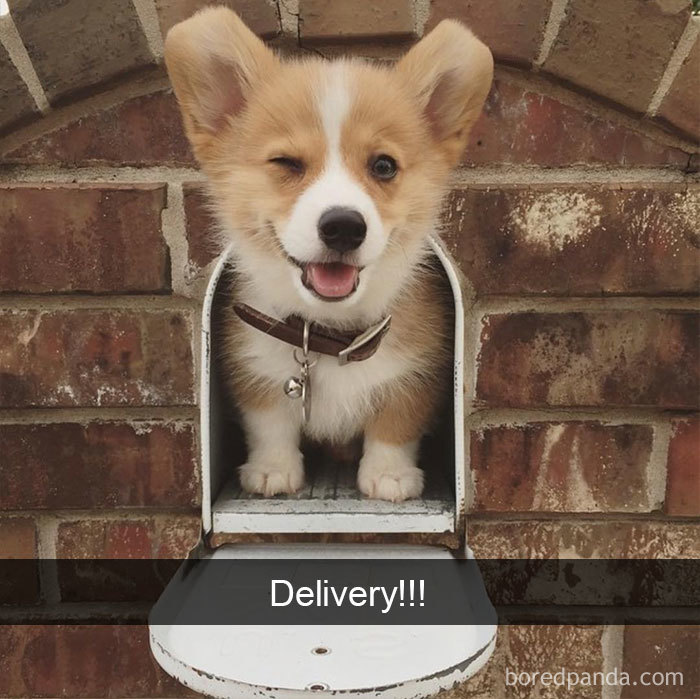 Delivery!!!