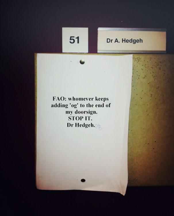 Poor Dr. Hedgehog