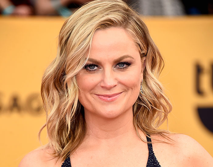 Amy Poehler Did Not Play Along In An Interview And Won The Internet Over With Her Answers