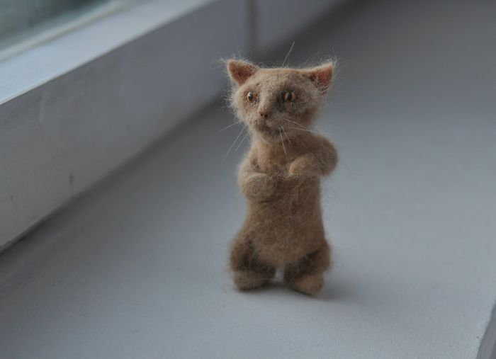 I Combed My Cat And Created A Smaller Version Of Him From His Fur