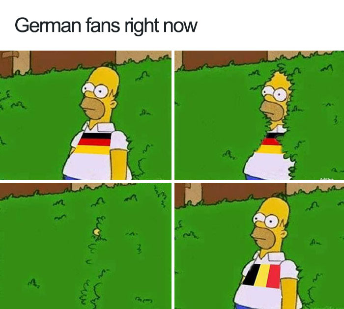 german fans right now