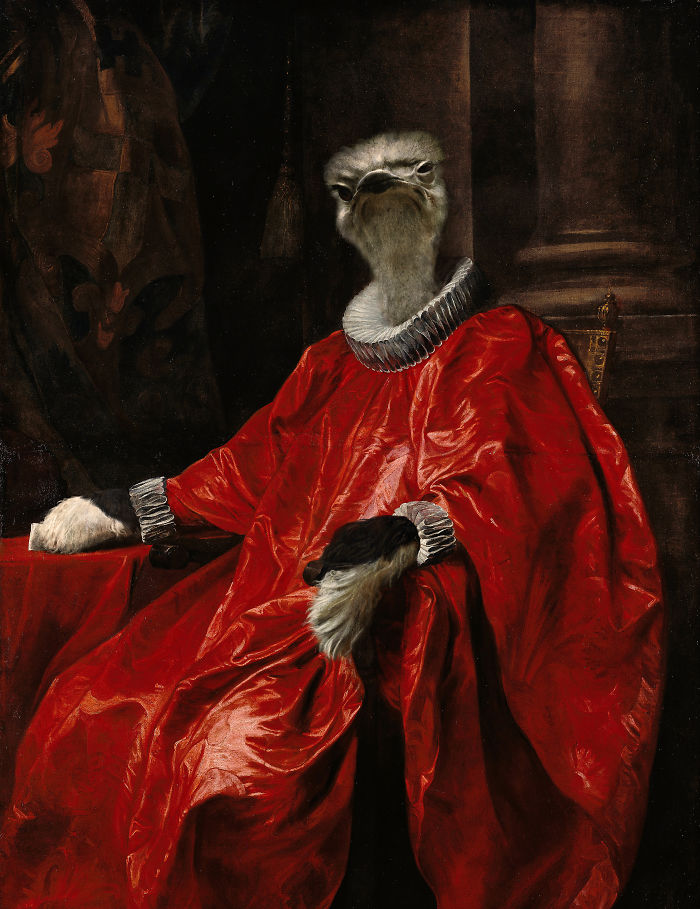 Cardinal Ostrich