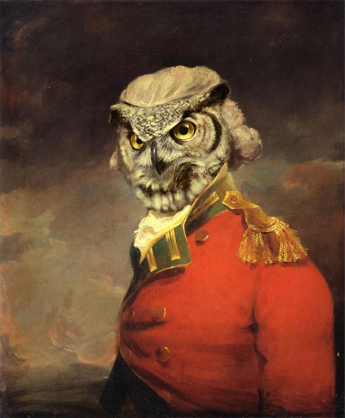 Major Owl