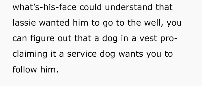 service-dog-psa-lumpatronic-8
