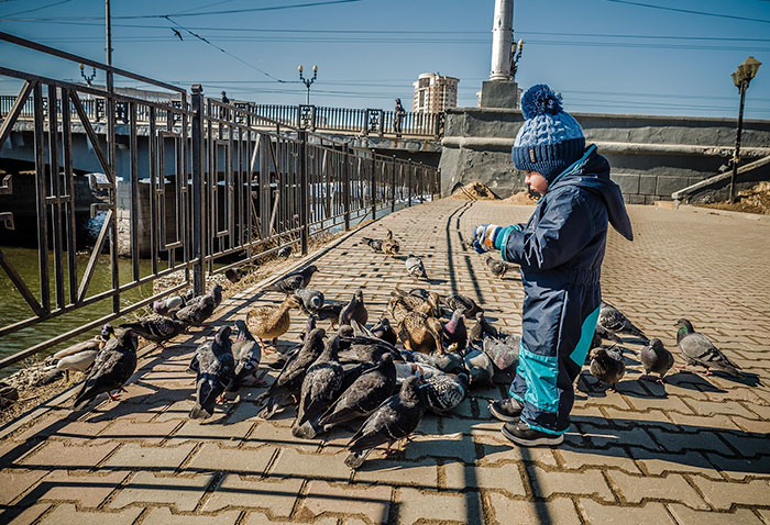 Kids And Pigeons: Where The F**k Do They Get Them?