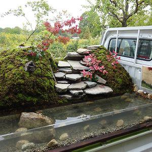 Refreshing Garden With Cascade Waterfall