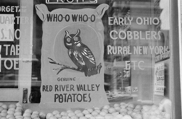 Grocery Store Window, Dubuque, Iowa, 1940