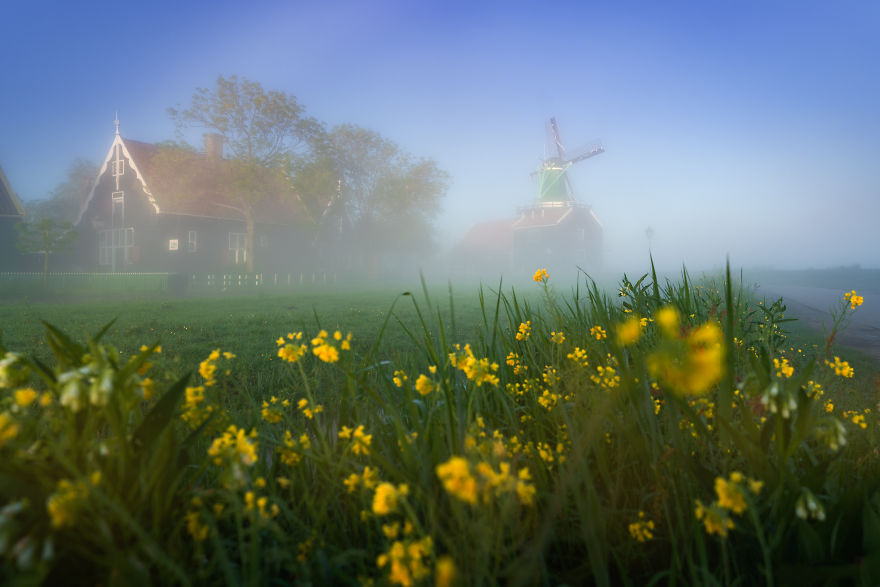 With The Sun Up The Fog Slowly Flows Out Of The Way Revealing The Magical Scenery Of The Zaanse Schans