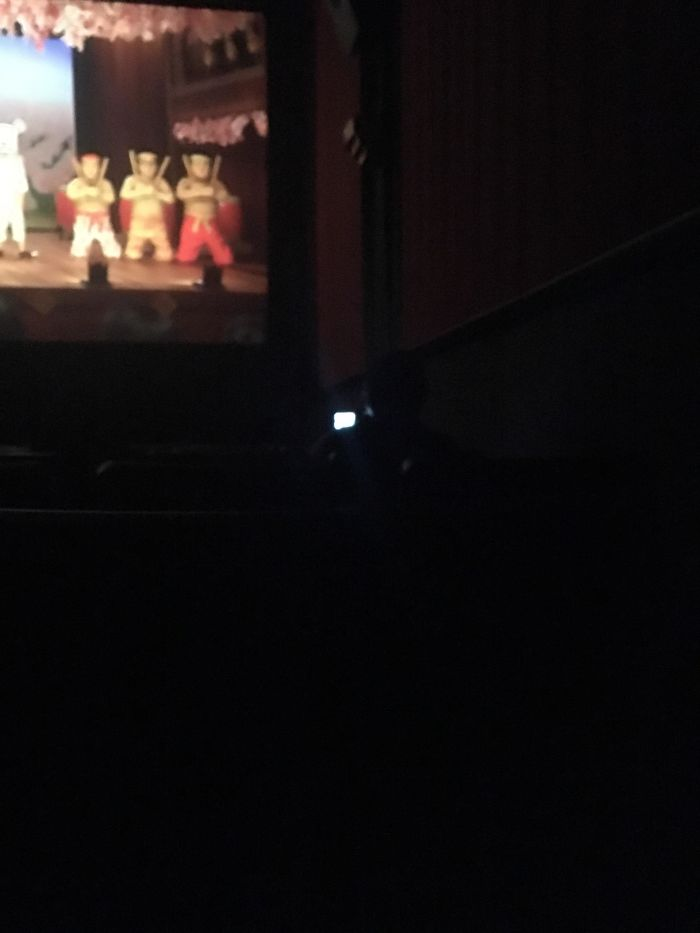 Went To See Isle Of Dogs Tonight. This Woman Brought Her ~2-Year-Old Son To This PG-13 Movie. When He Started To Cry, Instead Of Taking Him Out, She Put Peppa Pig On Her Phone On High Volume For Him To Watch, Which He Did For The Remaining Hour Of The Movie