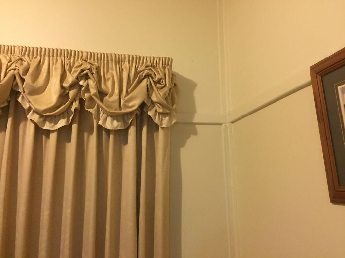 The Shadow My Curtains Cast Is The Senate