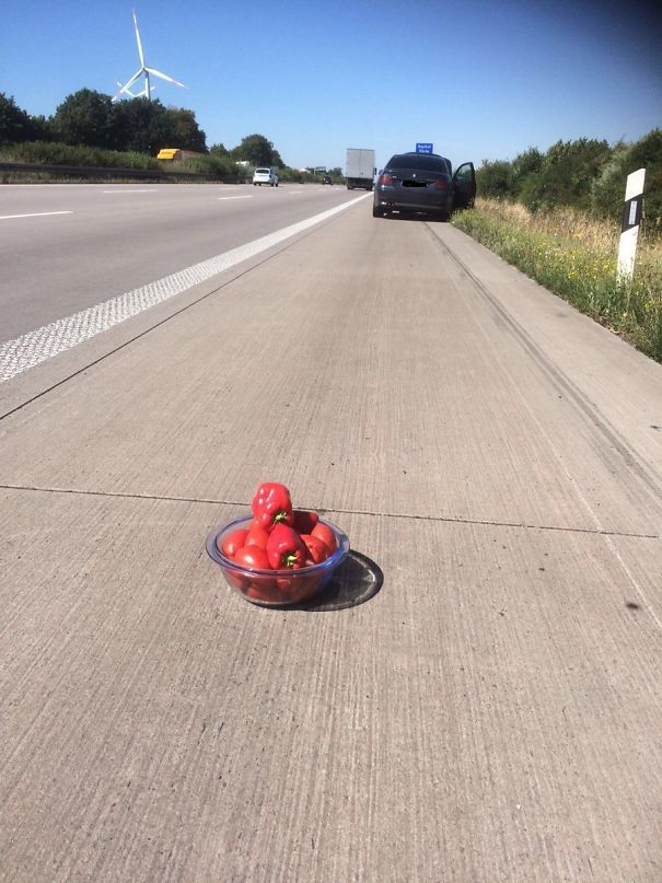 This Lithuanian Driver Didn't Have A Warning Triangle, So Instead He Put Down On The Road... A Bowl With Tomatoes And Paprikas