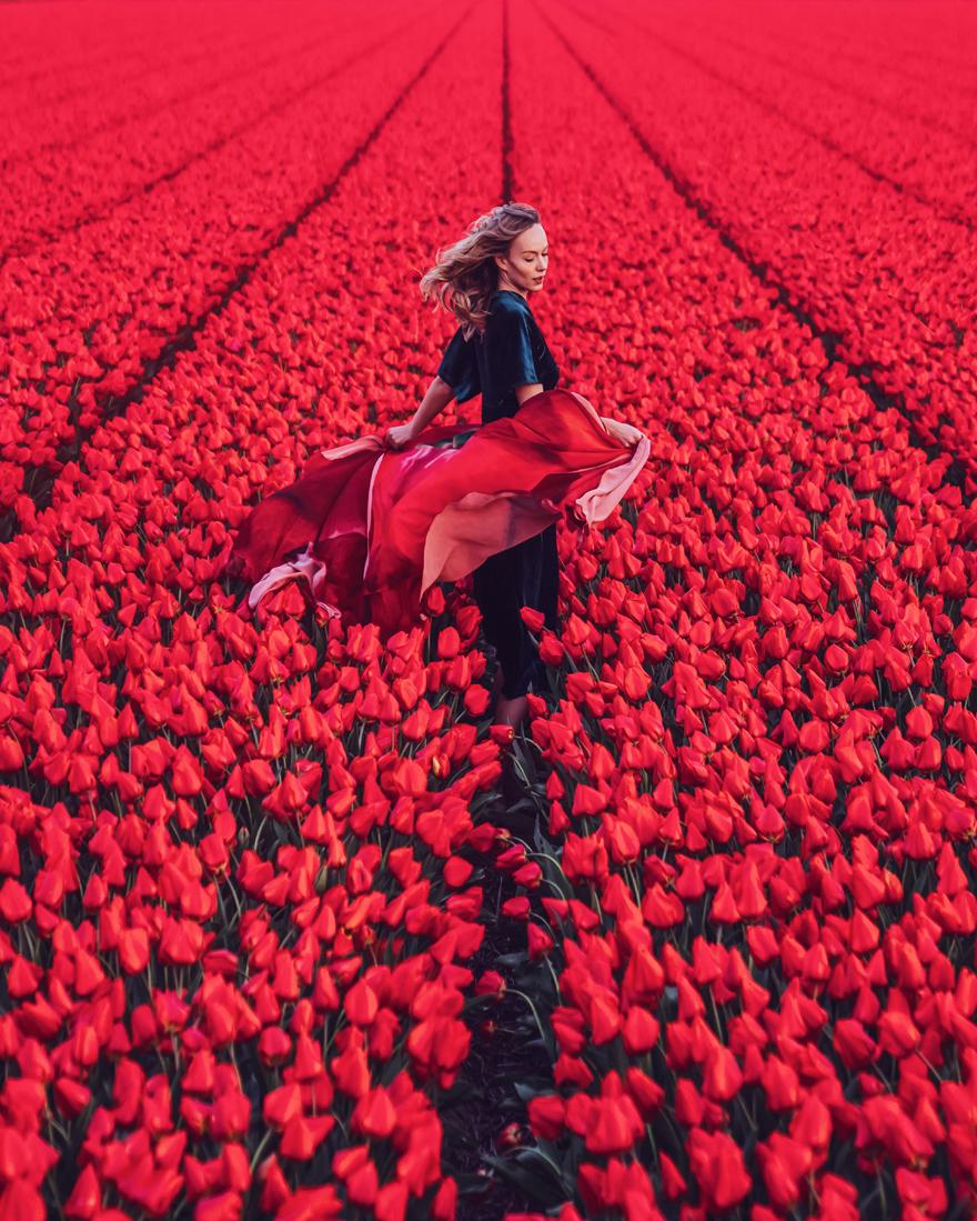 North Holland, Tulips Field. Model: Asya