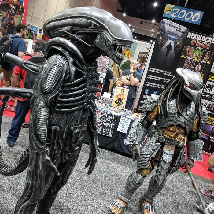 Xenomorph And Predator