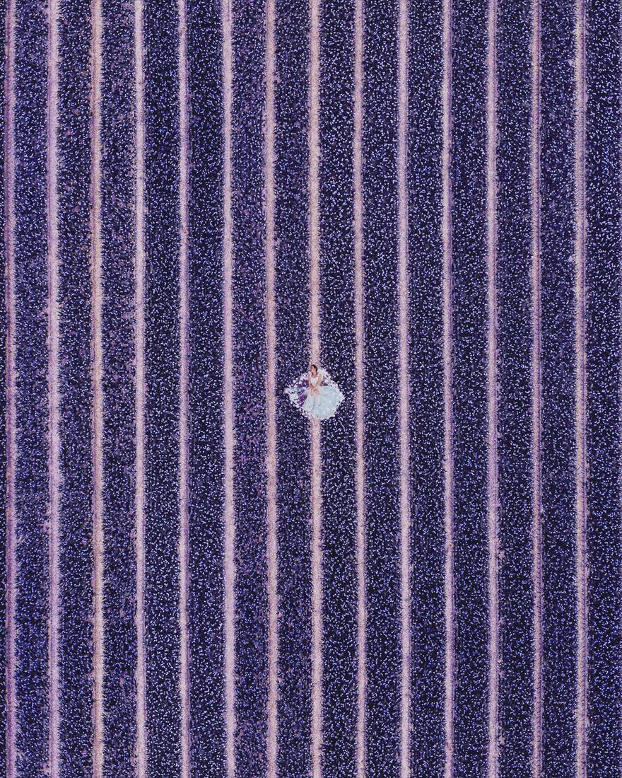 Hyacinth Flowers Field In North Holland. Model: Valeria