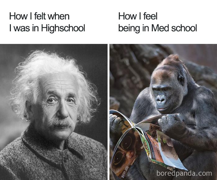 High School vs. Med School