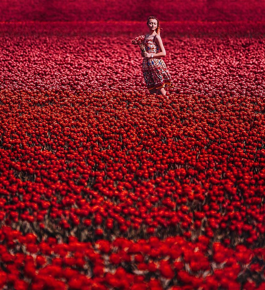 Tulips Field, Lisse, Holland. Model: Nastya