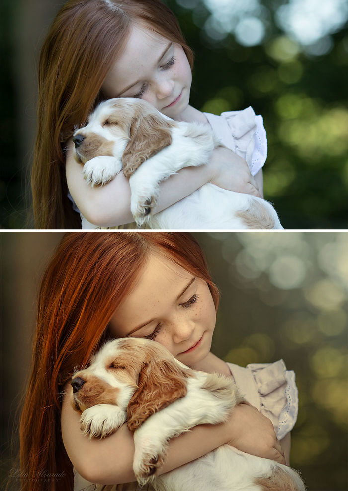 Happiness Is… A Warm Puppy