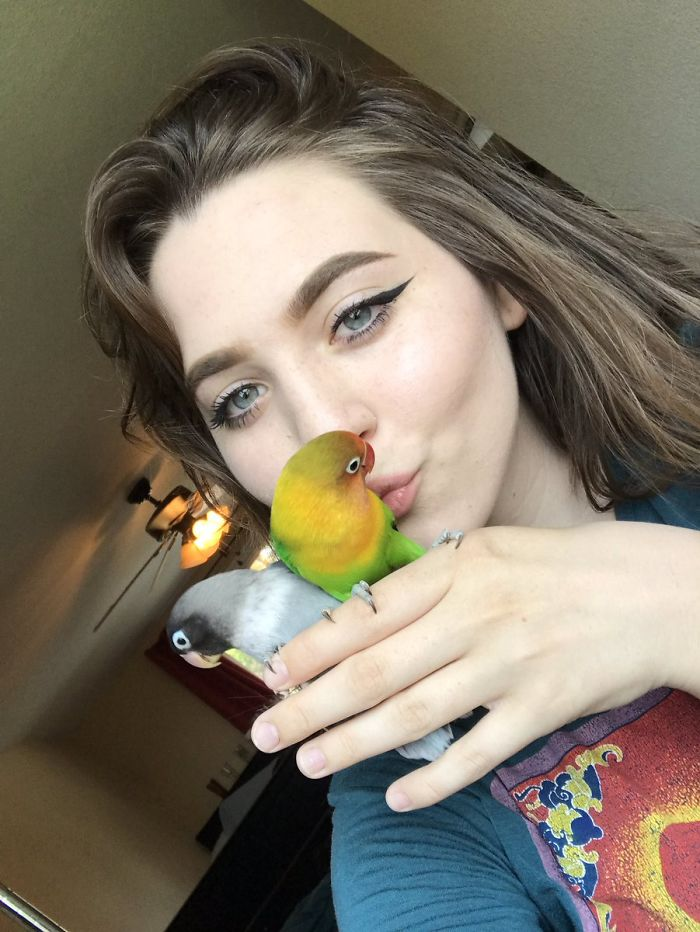 Maura Hennelly Shared A Truly Beautiful Story Of Her Lovebirds And People Fell In Love With It