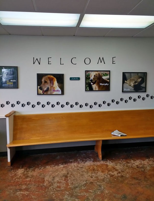 My Vet's Office Mixing Up The 'M' And 'W' In This 'Welcome' Sign