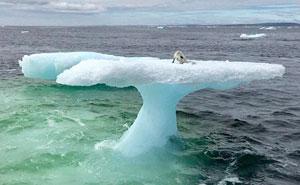 Estos pescadores creyeron ver una foca sobre un iceberg, hasta que miraron más de cerca