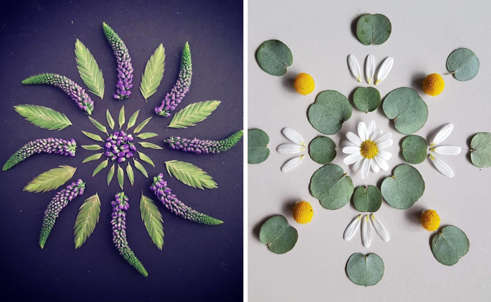 I Create Mandalas From Things I Find In Nature As A Way To Meditate