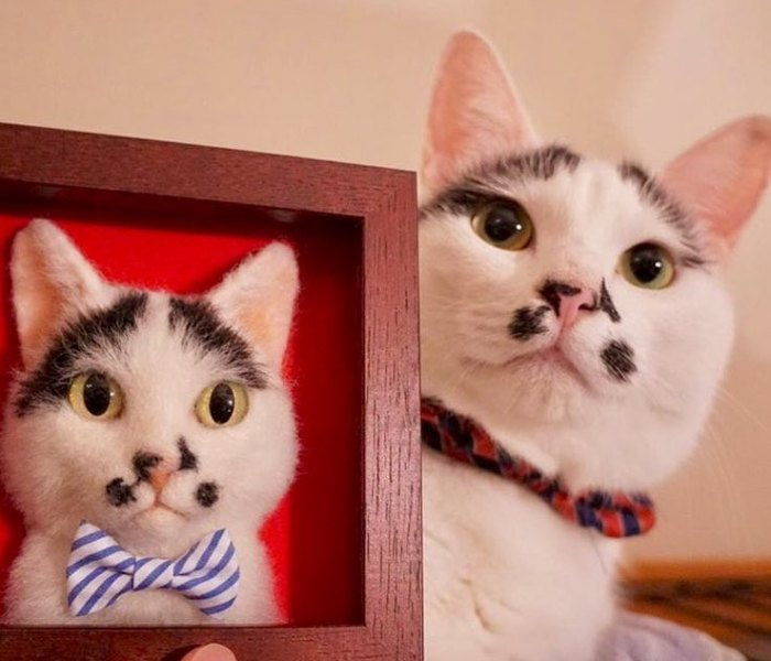 Artist From Japan Makes Hyper Realistic Cat Portraits From Wool